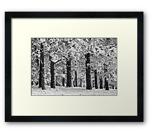 Blue Bell Ridge Framed Print