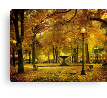 Public Garden, Boston MA Canvas Print