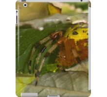 Marbled Orb Weaver iPad Case/Skin