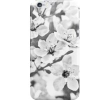 Fruit Or Flower? iPhone Case/Skin