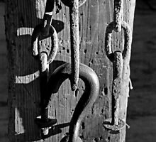 Block and Tackle 4 BW by marybedy