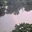 Rainbow in the  Rideau River, Ottawa, ON Canada by Shulie1