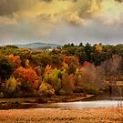 Autumn painting by LudaNayvelt