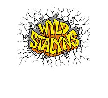 Bill and Ted - Wyld Stalyns - Logo Photographic Print