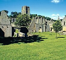 Fountains Abbey 2 by Priscilla Turner