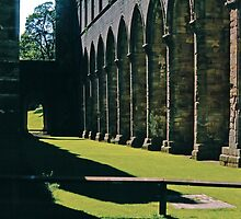 Once the Nave, Fountains Abbey by Priscilla Turner