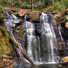 Stevenson Falls. by Bette Devine