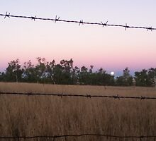Barb-wire Moon by Elkedra-girl