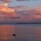 A colourful evening at the Baltic Sea by jchanders