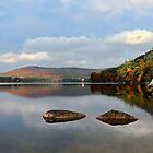 Quiet Autumn Morning - Bear Pond by T.J. Martin