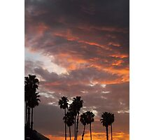 California Palm Sunset Photographic Print