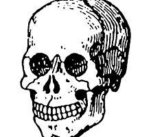 Old Retro Skull by cartoon