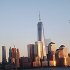Twilight View of Lower Manhattan Skyline, New World Trade Center, New York City by lenspiro