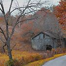 Barn in bend of Road by G. Cobble