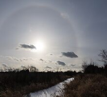 Sun Halo - a Beautiful Optical Phenomenon in the Winter Sky by Georgia Mizuleva