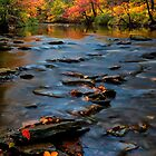 Autumn Octoraro Creek by KellyHeaton