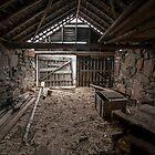 Shelter by John Morton