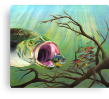 Large Mouth Bass and Clueless Bait Fish Canvas Print