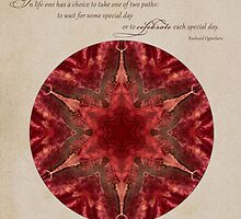 Celebrate each Day: Inspirational Mandalas by Gail S. Haile by Gail S. Haile