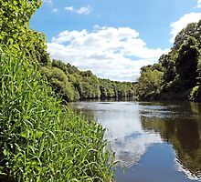 Upstream to Clydesdale by Stuart  Fellowes
