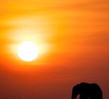 Mara sunset by GinnyScholes