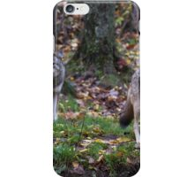 Pair of coyotes in a forest iPhone Case/Skin