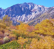 COLORFUL AUTUMN MOUNTAIN RANGE IN MAMMOTH MOUNTAIN by CHERIE COKELEY