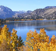 JUNE LAKE WITH GOLDEN FALL TREES by CHERIE COKELEY
