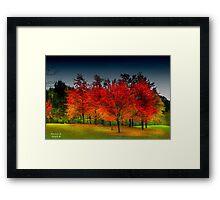 """ Red Dawn "" Framed Print"