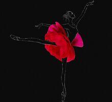 Ballerina dancer by Olga Kashubin