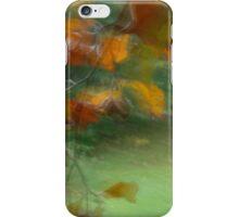 Leaves and nuts in Peebles park iPhone Case/Skin