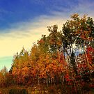 Fall's End 2014  by Elfriede Fulda