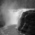 Falls at Letchworth by Lisa Cook