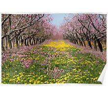 Blossom Heaven Poster