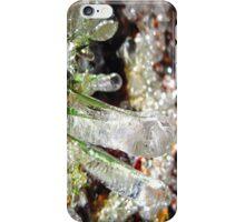 magical ice garden iPhone Case/Skin