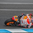 Marc Marquez 2014 Moto GP by JohnKarmouche