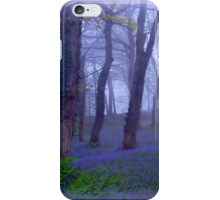 Rainy Morning at Blackbury Camp iPhone Case/Skin