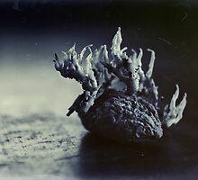 Bad Potato by Birgitta   †