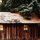 Miner's Cabin by Lori Peters