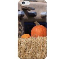 Southwest Autumn  iPhone Case/Skin
