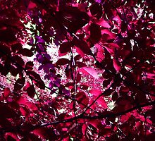 Glamour Pink Tree Leaves and Sky Art by 7RayedDesigns