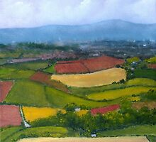 View from Scrabo by Les Sharpe