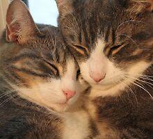 Sibling Love by casualmatador