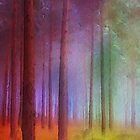 Misty Woods by Bunny Clarke
