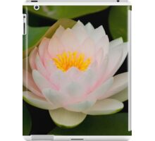 Pink Lotus with in pond. iPad Case/Skin