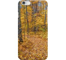 Golden Fall Colour iPhone Case/Skin