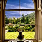 The View From the Castle by Kathy Weaver