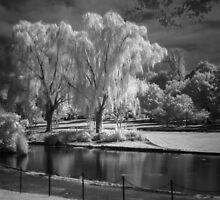 Constitution Park by Bernai Velarde