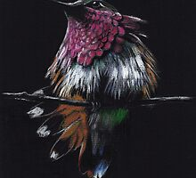 """Jewel""  Amethyst-Throated Hummingbird  by Rebecca Rees"