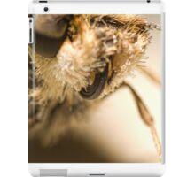 Skitter Butterfly iPad Case/Skin